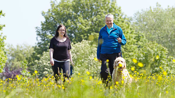 A man and a woman walk together with a golden retriever dog through a grassy meadow.